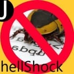 ShellShock – How to test your system