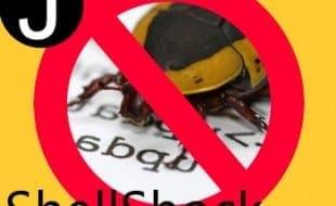 shellshockbug
